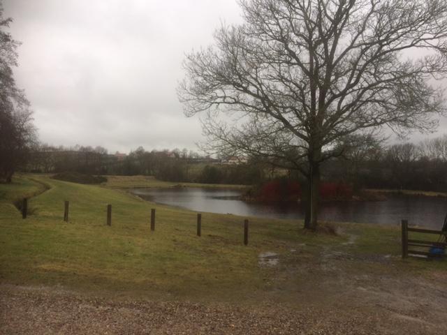 Wet Jubilee Lakes